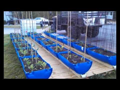 1000 Images About Gardening Rain Gutter Grow System On