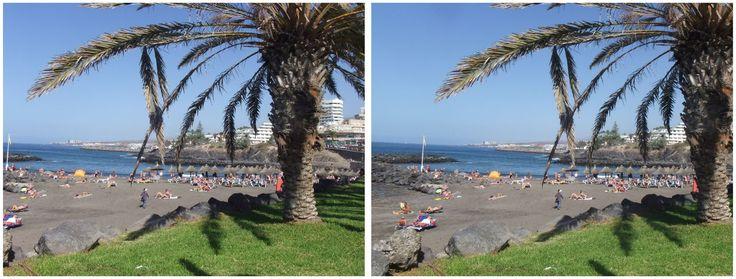 Tenerife beach and tree 3D view 2017