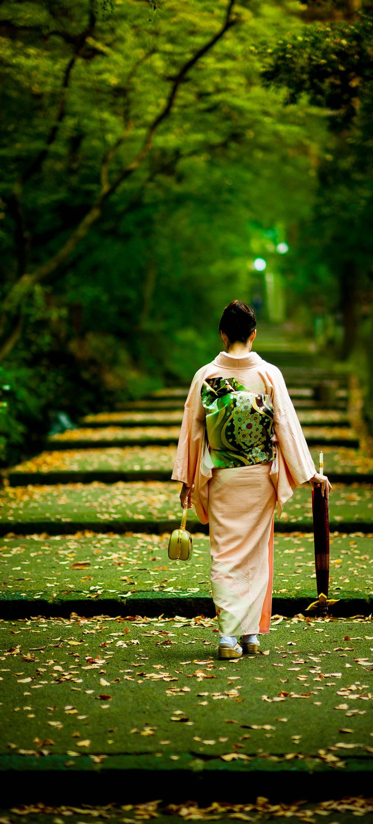 Japanese lady in kimono and wagasa 8japanese umbrella)