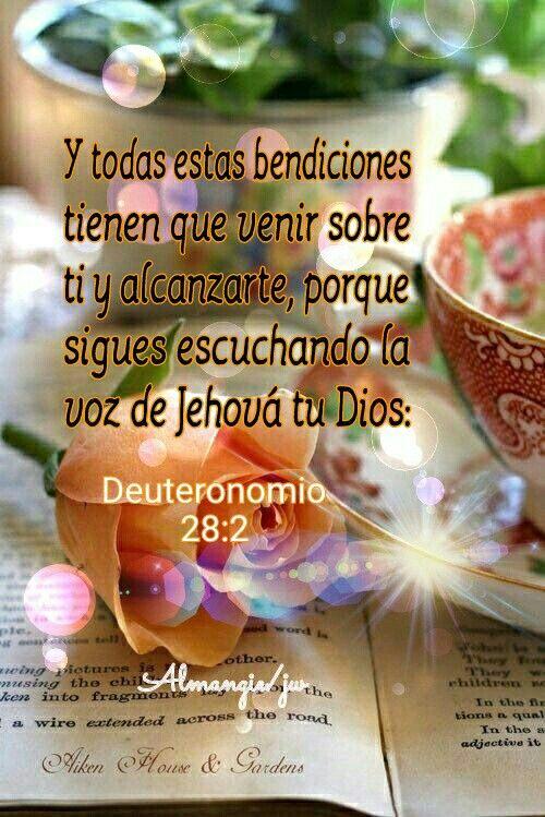 ~Deuteronomio 28:2~