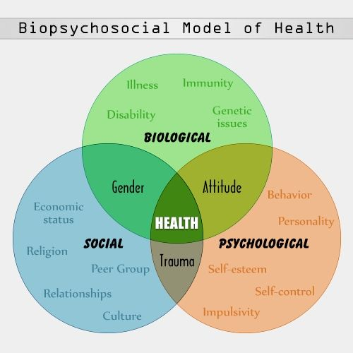 A General Overview Of The Biopsychosocial Model With A