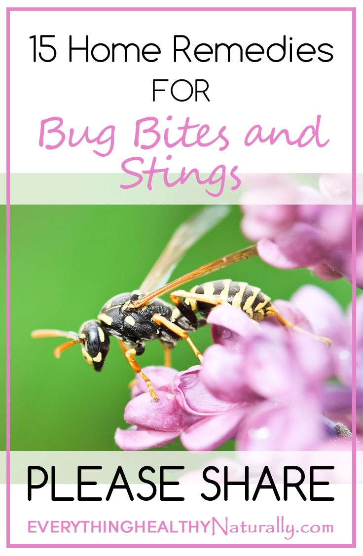 Good ideas- 15 Home Remedies for Bug Bites and Stings