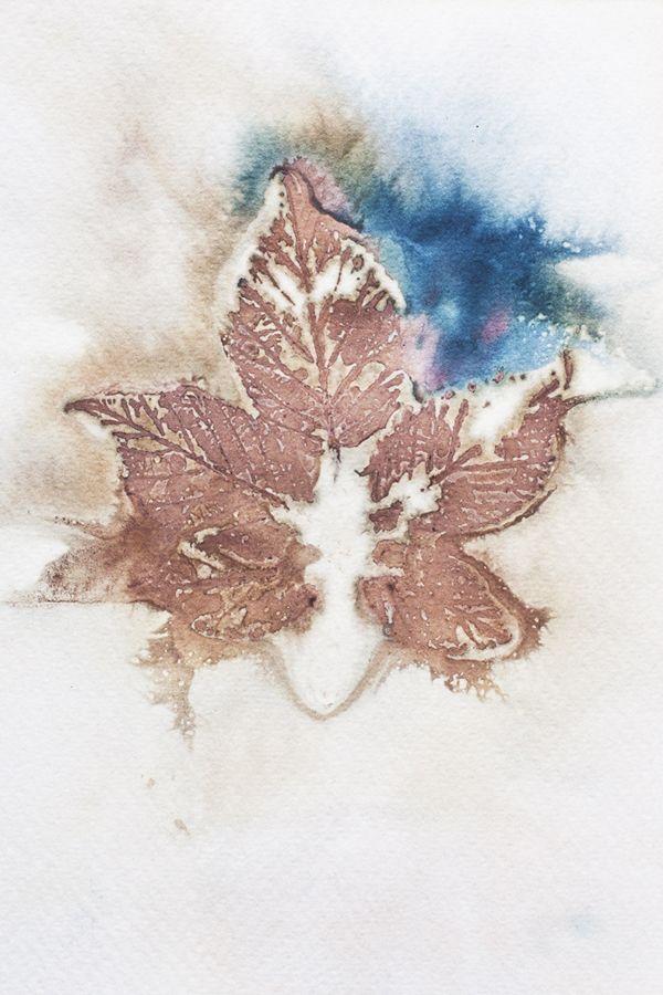 2000poils: eco-printing on paper - N°2 (privet berries, blackberry leaves)