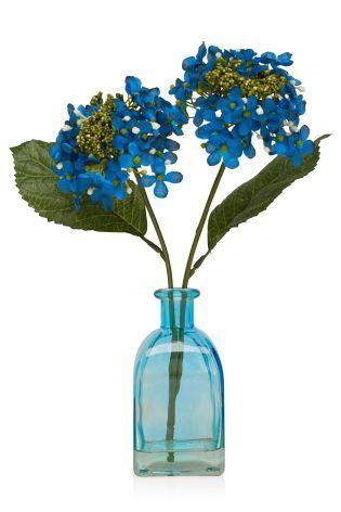 Blue Hydrangea Bottle from Next