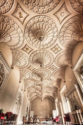 where my wedding pics were taken, what a ceiling @ Charleville castle, Tullamore
