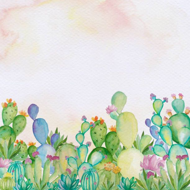 Watercolor Cactus Background Watercolor Hand Draw Cactus And