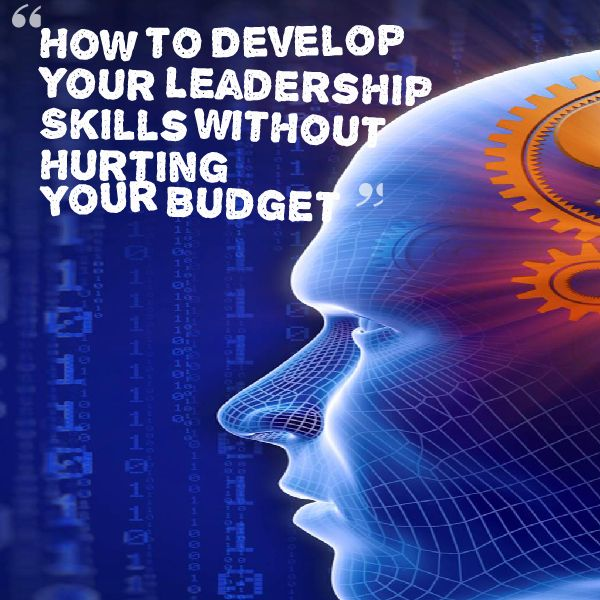 How to Develop Your Leadership Skills without Hurting Your Budget