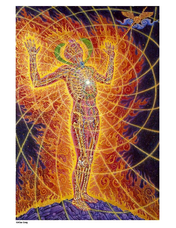 66 best Alex Grey images on Pinterest | Alex gray art ...
