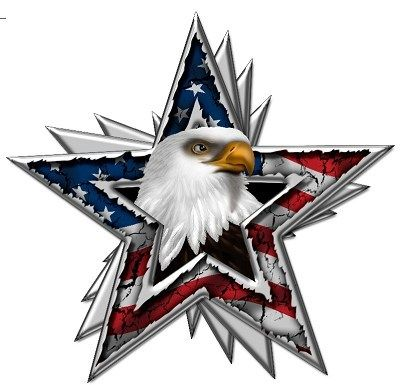 Details About American Flag Eagle Head Star Race Car Go