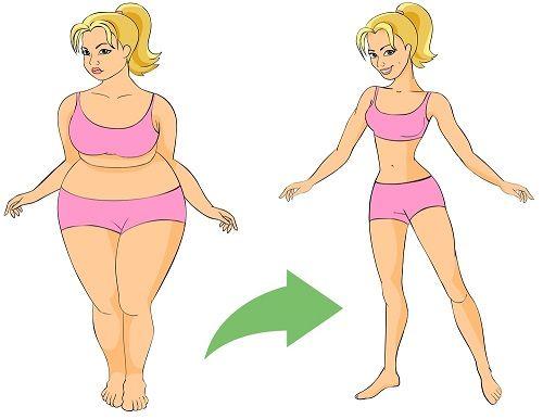Новые достижения в борьбе с ожирением     Разработан механизм, с помощью которого можно отключить гены лишнего веса