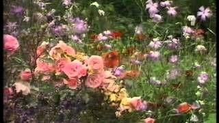 geoff hamilton gardeners world - YouTube