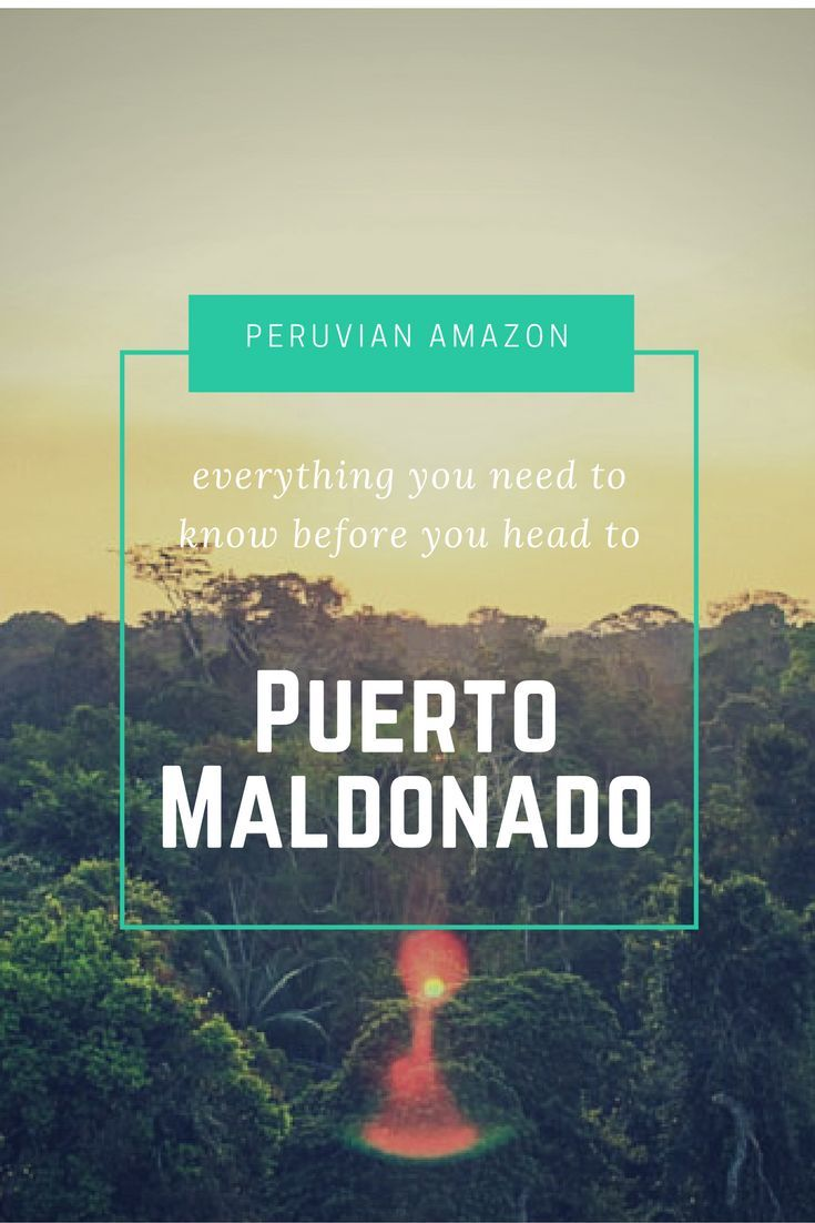 Amazon Jungle Stay near Puerto Maldonado, Peru. Amazon rainforest Peru - Posada Amazonas offers wildlife, piranhna fishing, relaxing hammock and Amazon's rich ecosystem. An luxury Ecolodge / eco-lodge and mid-range amazon tours. A South America must do with Earth, nature and wilderness ☆☆#Inspiredbymaps ☆☆