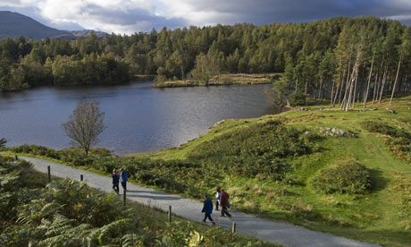 Tarn Gill to Tarn Hows-Family Walk. 10 of the best walks in the Lake District | Travel | The Guardian