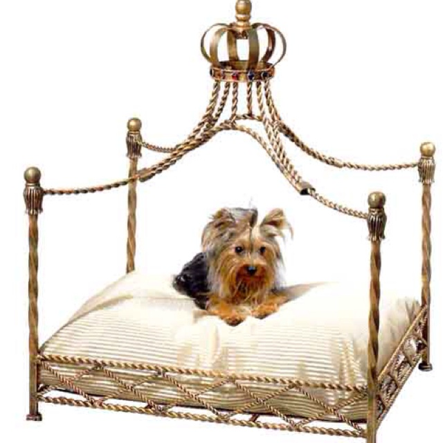 fancy dog bed beds furniture cheap luxury uk large