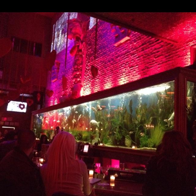Study Room With Aquarium: 690 Best Images About Aquarium Ideas And Design On