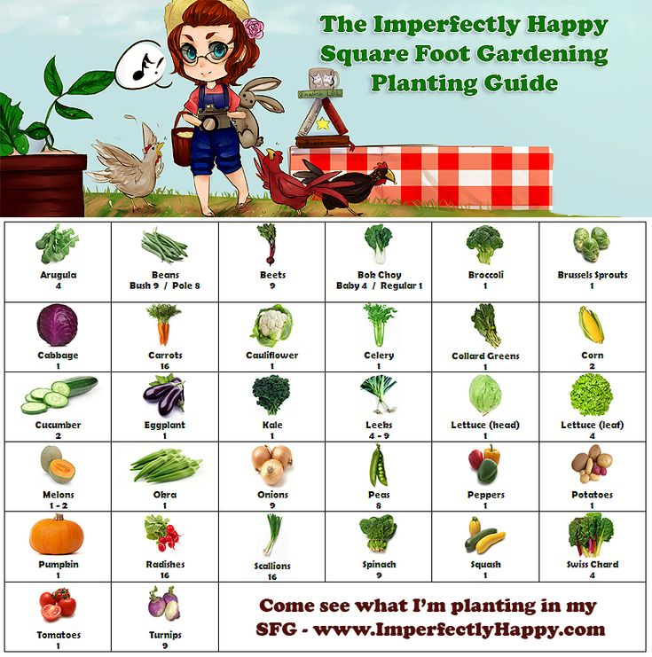 Square foot planting guide gardening squarefootgardening for Square foot garden designs