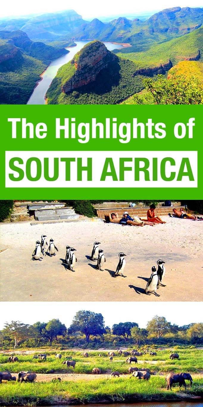 The highlights of South Africa. Local's guide to the best family friendly  destinations in South Africa that should be on your itinerary: