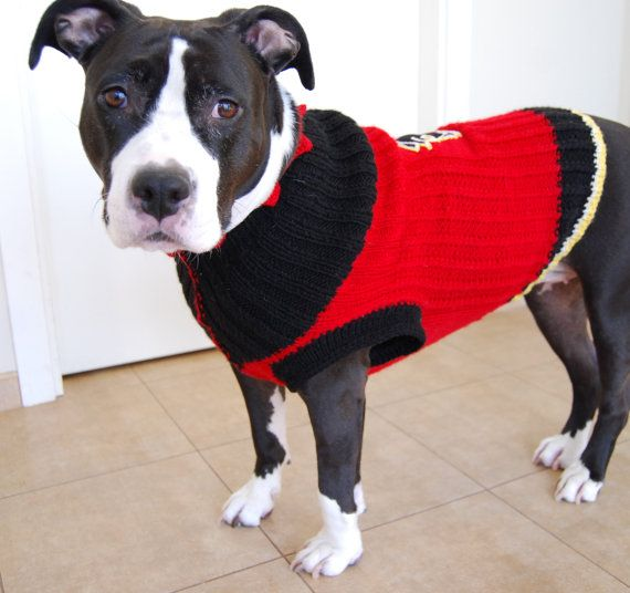 Large dog sweater for fans of NHL Calgary Flames by LaimutesHDJ