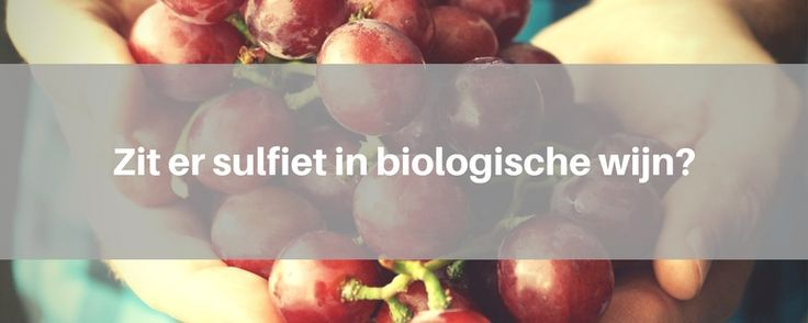 Zit er sulfiet in biologische wijn?
