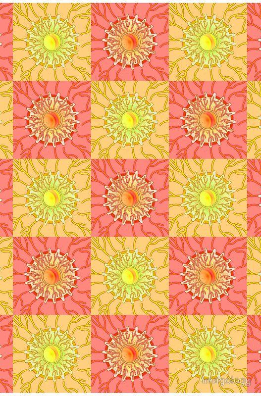 Chequered Sunshine