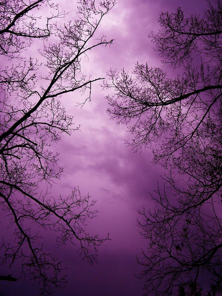 Lavender Sky At Night How Beautiful