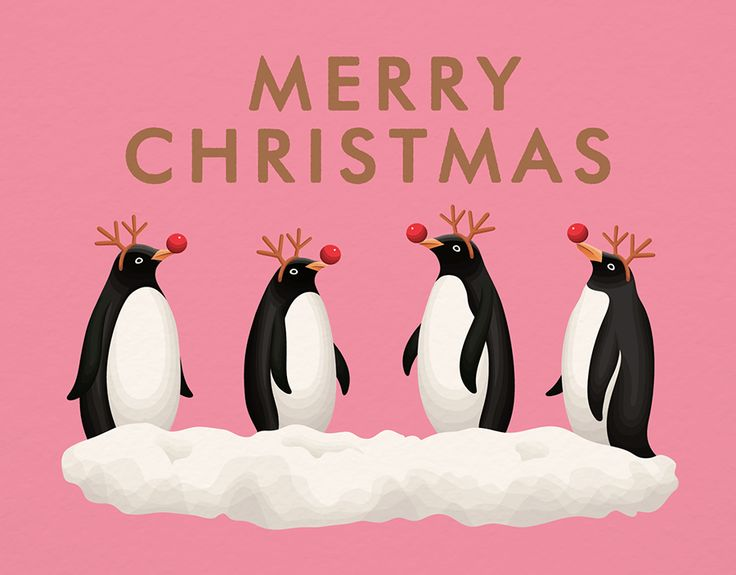 Pink Penguin Christmas card by Clap Clap on Postable.com