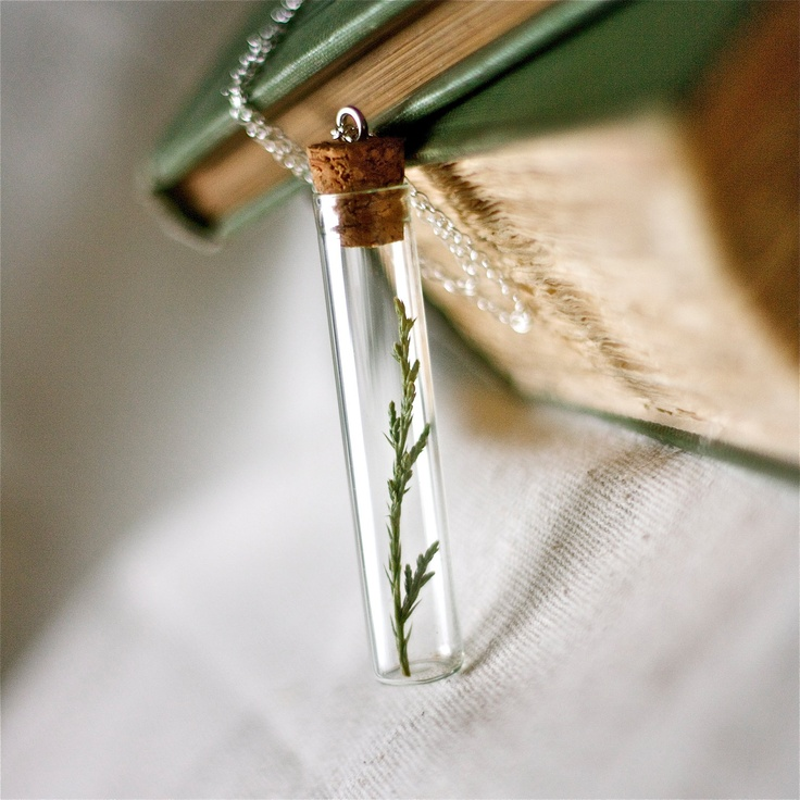 Botanical vial necklace. #RachelBall #elephantine