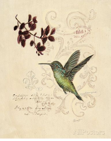 Filigree Hummingbird Prints by Chad Barrett - AllPosters.co.uk