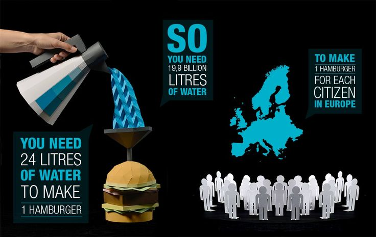 Water Usage and Fast Food - Matteo Giuseppe Pani
