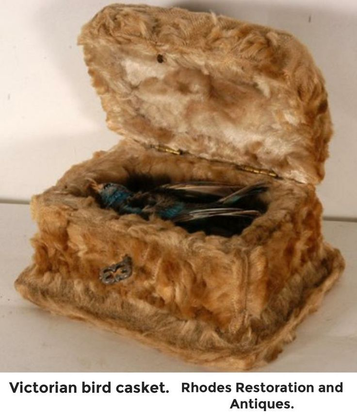 Rare bird casket.I sold it at Auction .went for $400.00 .The bird was holding a gold crucifix.Graham Rhodes @Bazaart