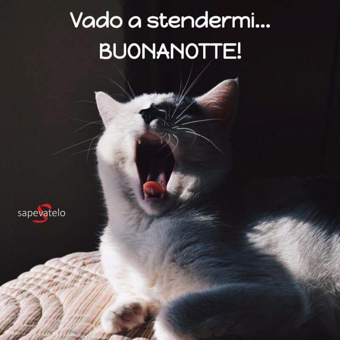 Frasi E Foto Per Augurare La Buonanotte Buonanotte