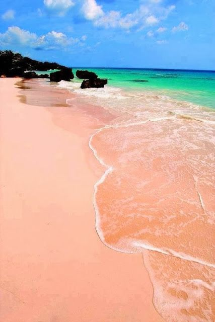 Pink Budelli Beach, Sardinia, Italy. Now there's where I wanna spend a beach day