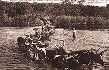 Dorsland Trek - Wikipedia, the free encyclopedia