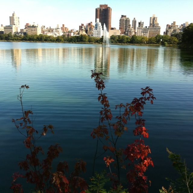 NYC skyline from the pond in Central Park.