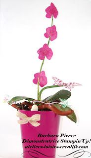Barbara, démonstratrice STAMPIN'UP!: Une orchidée, une autre...