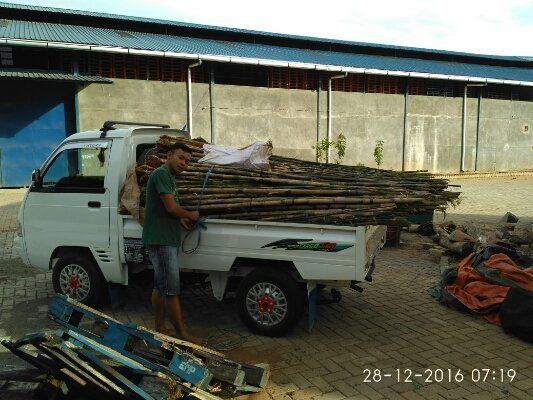 Rp 16.150 kami menawarkan pohon bambu jepang yang cocok sebagai tanaman pagar rumpah, pohon bambu jepang juga banyak manfaat yang dimilikinya sebagai tanaman penyerap udara kotor, sehingga cocok untuk tanaman pagar rumah yang berada dipinggir jalan maupun industri. untuk info dan pemesanan hubungi : 083811987651 WA : 089612239263