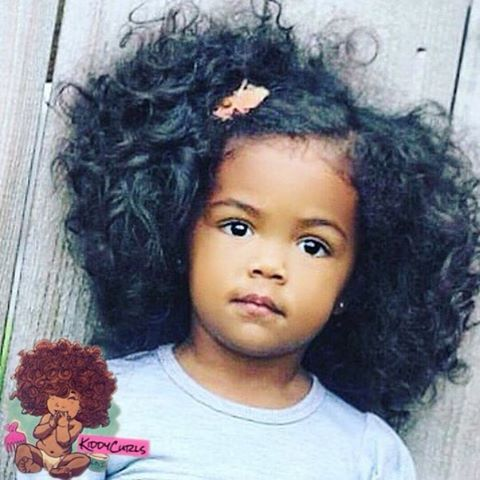 hair style instagram 1000 ideas about curly hair on curly 4401