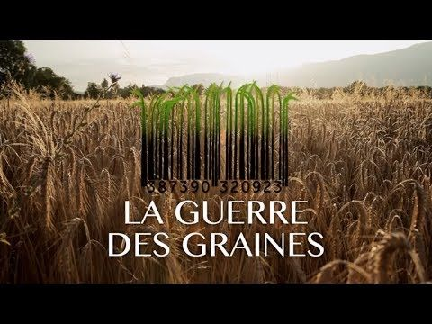LA GUERRE DES GRAINES [officiel] - YouTube