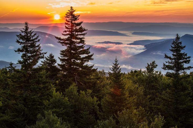 Summer Sunset, Dolly Sods Wilderness, Monongahela National Forest, West Virginia - Randall Sanger Photography
