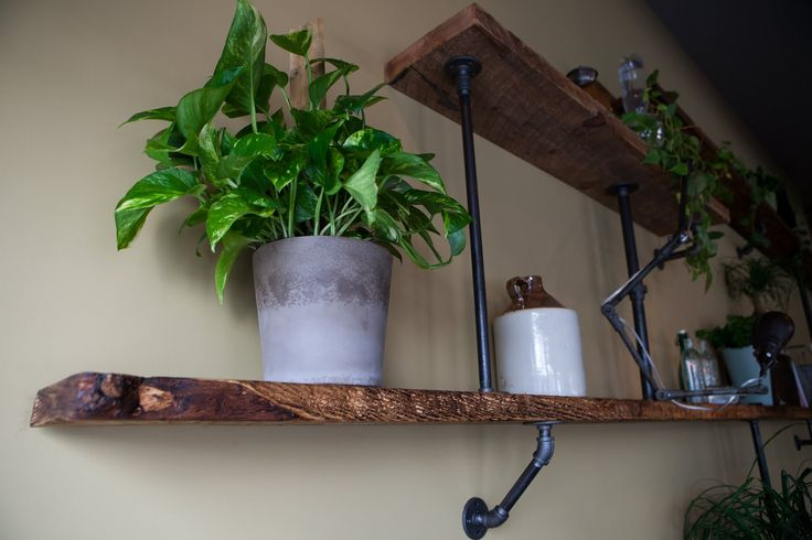 sticks and bricks: the roost- wall of shelving