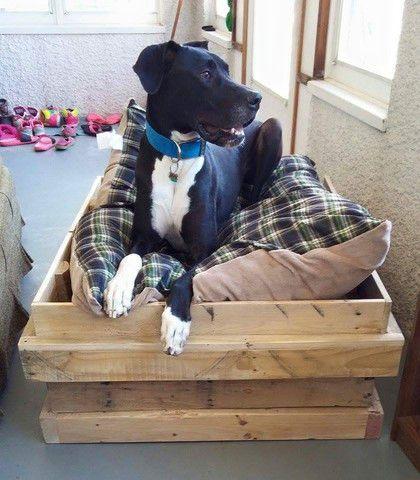Dog bed (large dog)