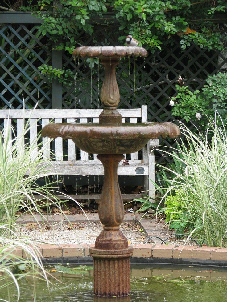 The bird bath complete with sparrow. Nacy Steen garden Parnell Rose gardens Auckland