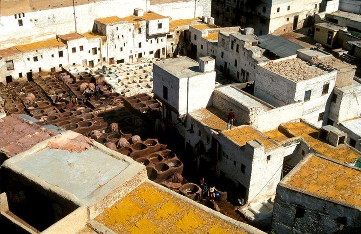 Medina of Fez, cultural and spiritual centre of Morocco
