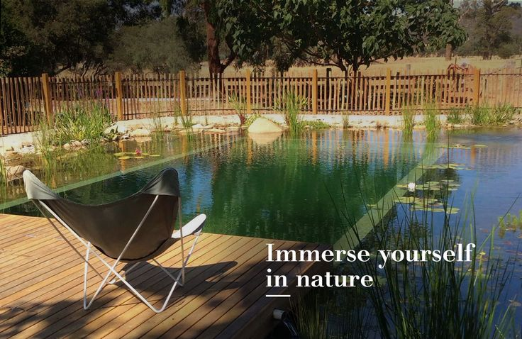 Freshwater swimming pool designs swimming pools bio pools natural pools australia fresh for Natural swimming pools australia