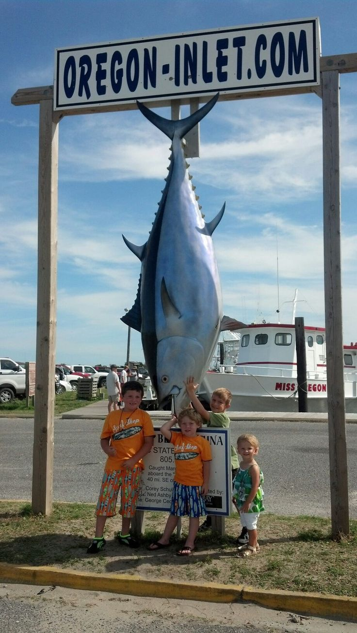 21 best images about wicked tuna on pinterest pewter us for Oregon inlet fishing center