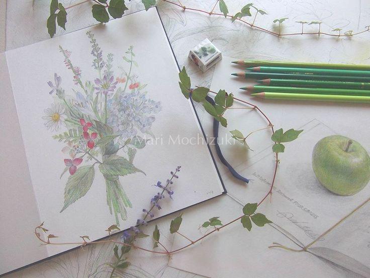 drawings by Mari Mochizuki, June 2015/スタジオから:季節の便り 2015年6月 母の庭の植物で作ったブーケの素描、青林檎とメニューの素描、庭の植物を用いた構成#望月麻里 mochizukimari.com