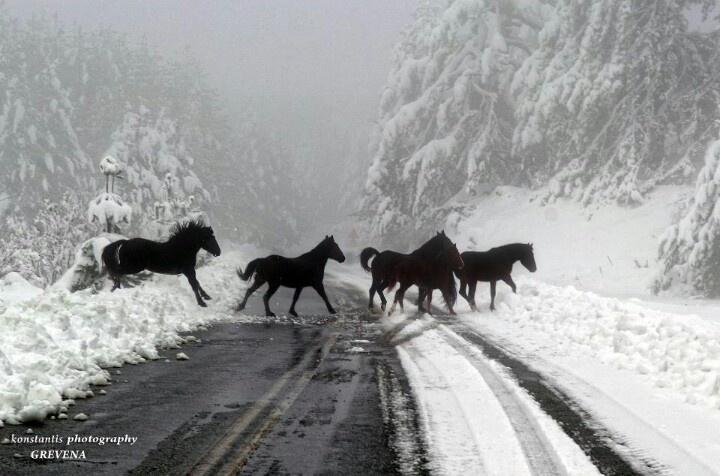 Epirus Greece homeland