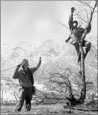 1945 10th mountain div fili telefonici del monte belvedere provincia di bologna
