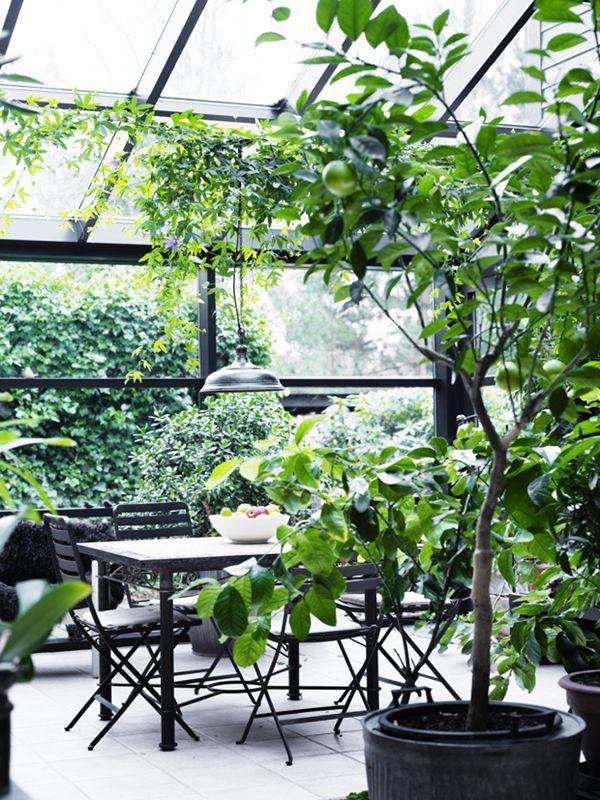 A SCANDINAVIAN HOME WITH INDOOR-OUTDOOR CHARM | coco+kelley | Bloglovin'