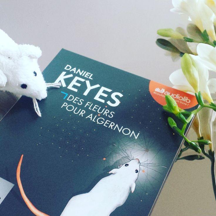 Des Fleurs pour Algernon, Daniel Keyes, Audiolib
